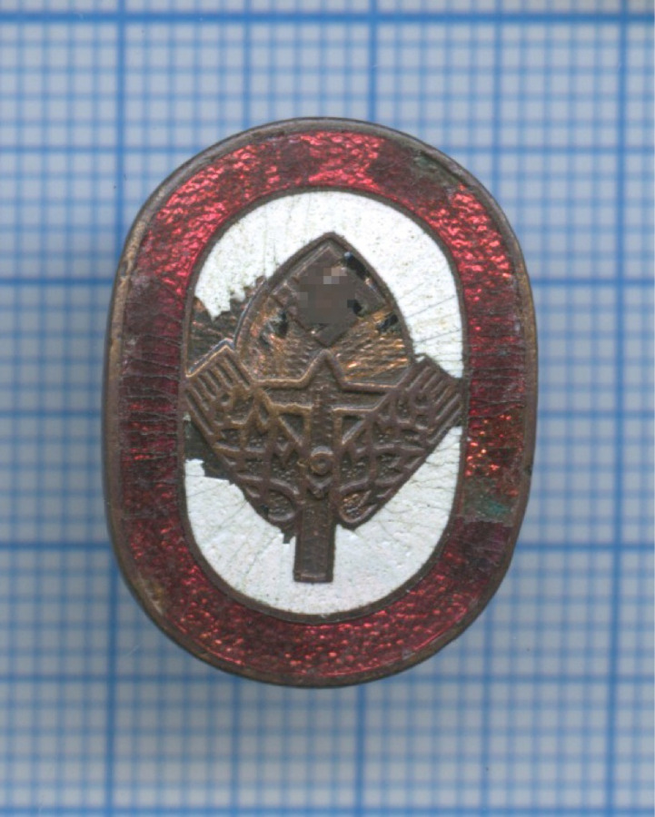 Знак фрачный трудовой службы RAD (Германия (Третий рейх))