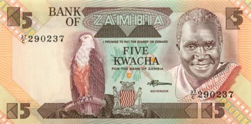 5 квач - Замбия
