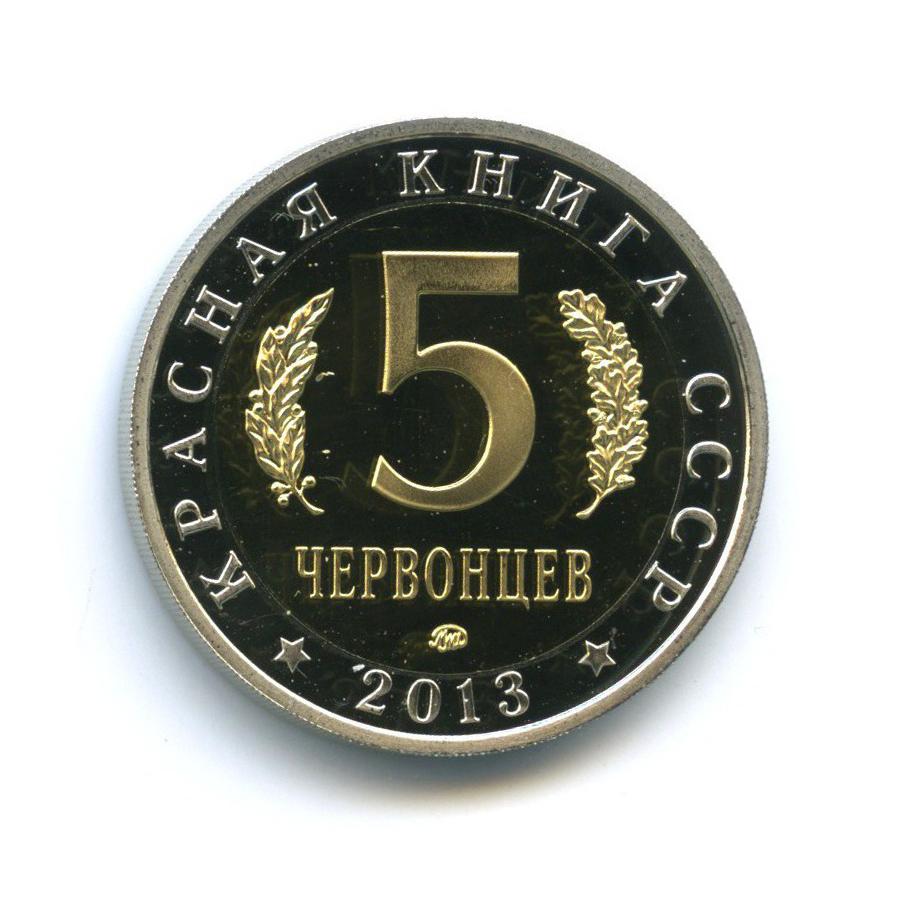 Жетон «5 червонцев 2013 - Красная книга - Жук-олень» ММД (Россия)