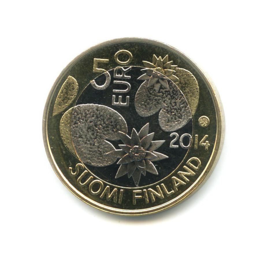 5 евро - Морская жизнь - Медуза 2014 года (Финляндия)