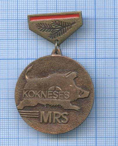 Знак «Kokneses - MRS» (Латвия)