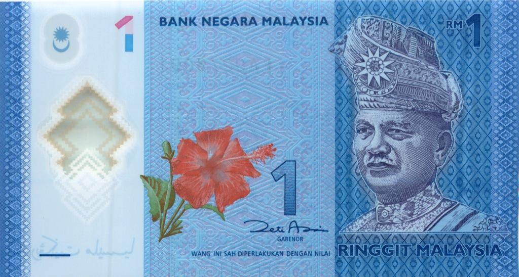 1 риггит (Малайзия)