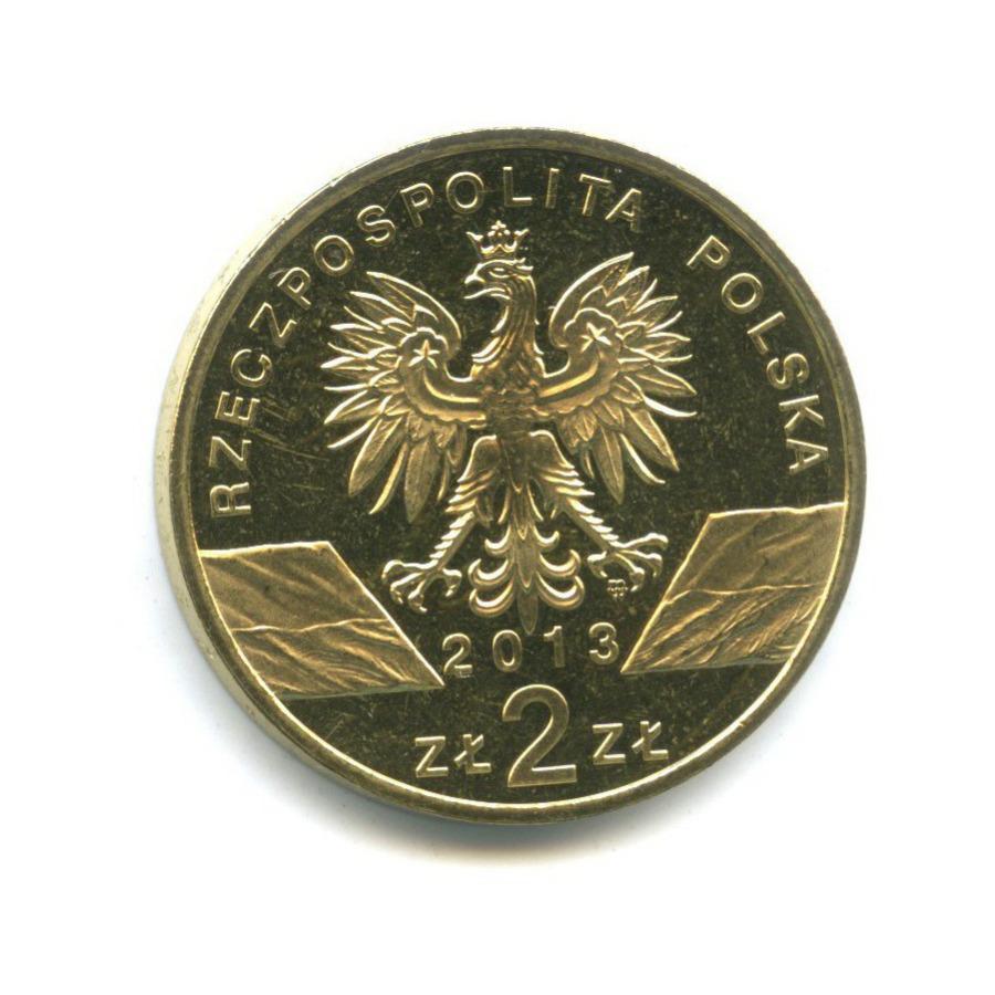 2 злотых — Всемирная природа - Зубр 2013 года (Польша)