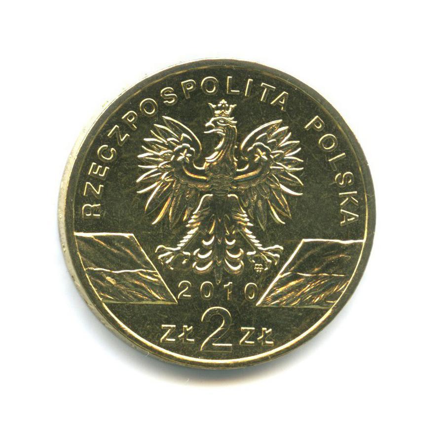 2 злотых — Всемирная природа - Летучая мышь 2010 года (Польша)