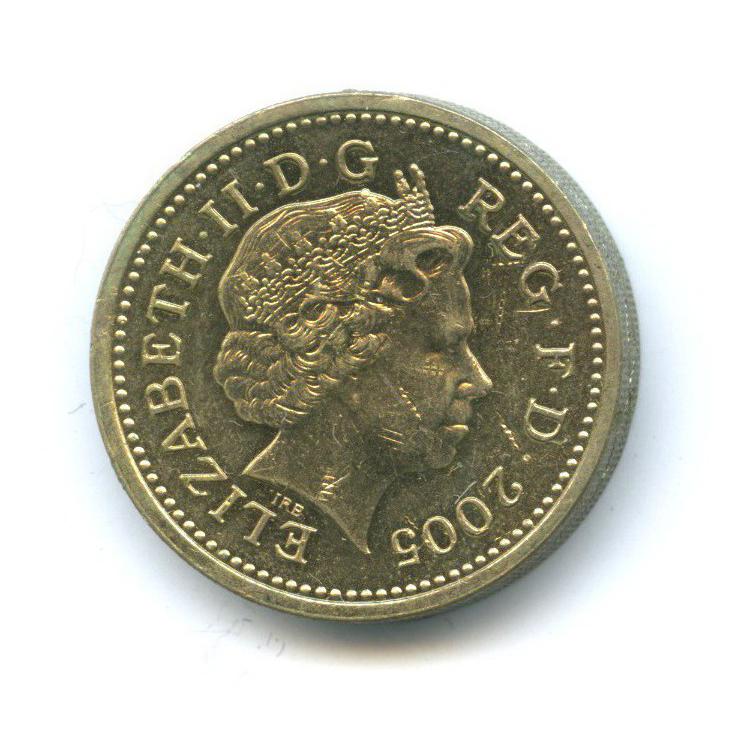 1 фунт - Уэльский мост 2005 года (Великобритания)
