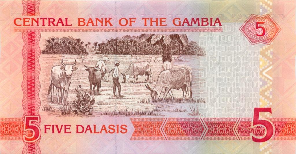5 даласи (Гамбия) 2012 года