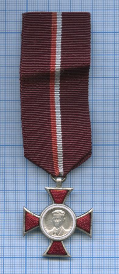 Знак отличия «Крест Яна Красицкого» (оригинал) (Польша)