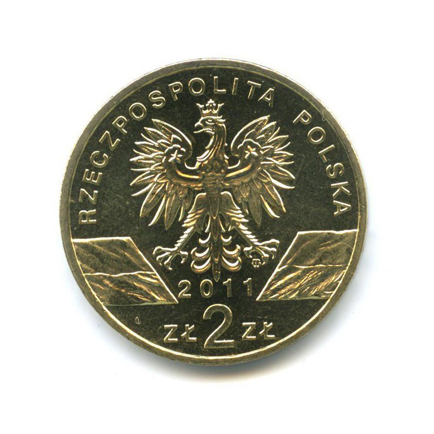 2 злотых — Всемирная природа - Барсук 2011 года (Польша)