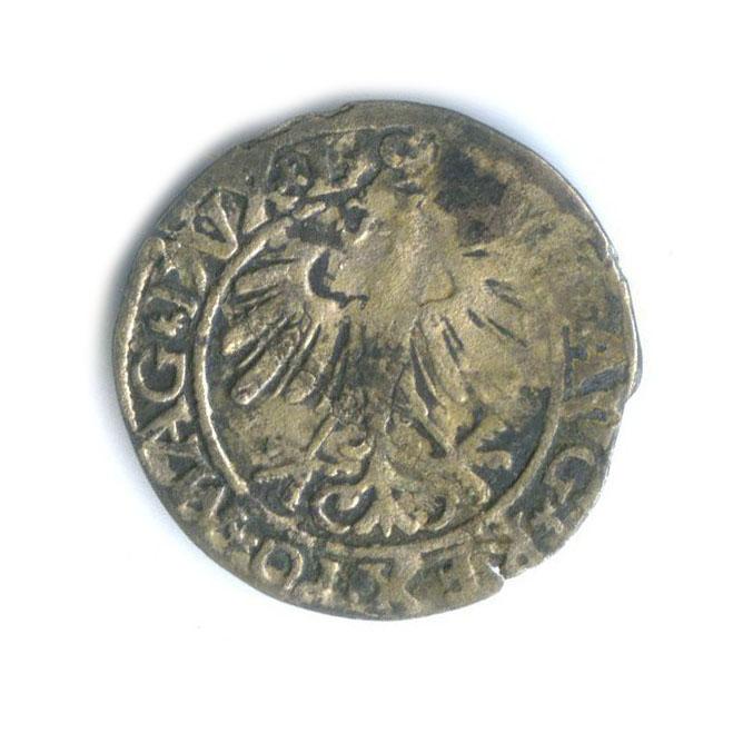 Полугрош - Великое княжество Литовское 1558 года (Литва)