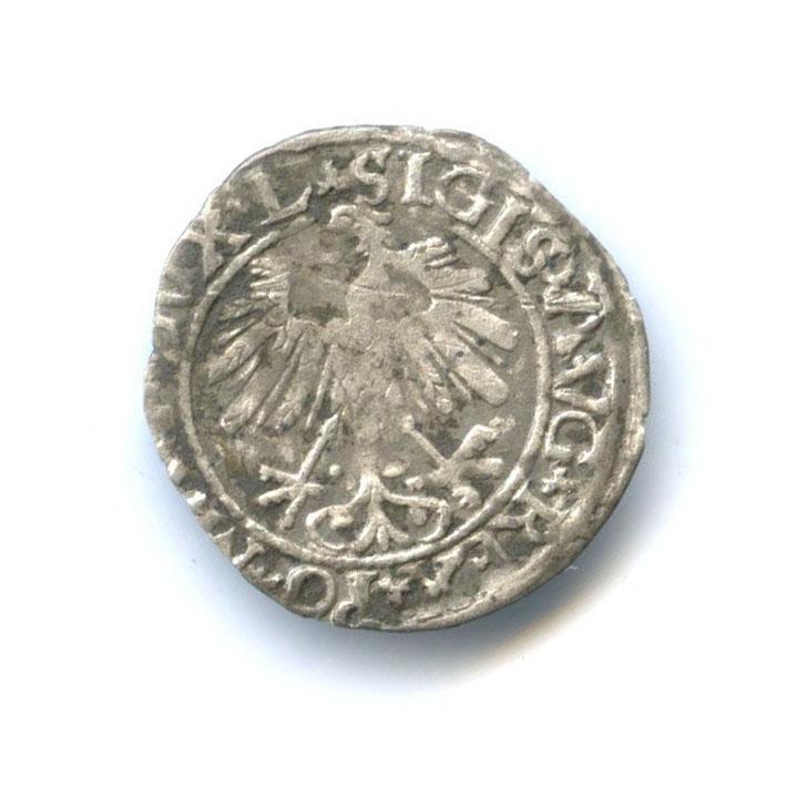 Полугрош - Великое княжество Литовское 1559 года (Литва)