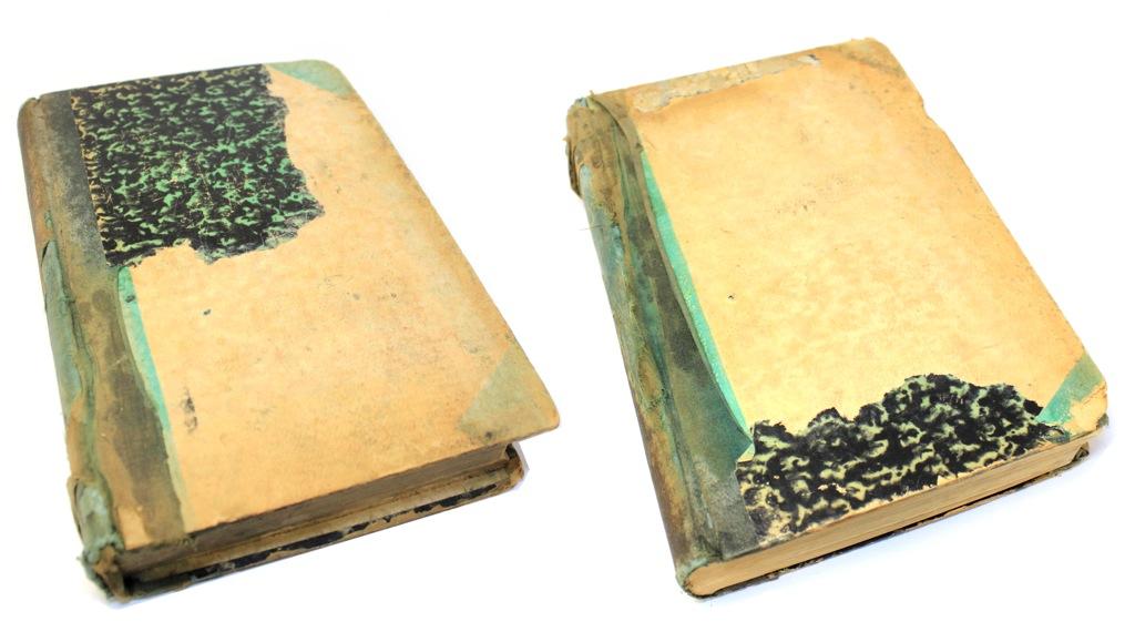 Книга «Zeitschrift für forst und Jagdmesen», Берлин, 750 стр 1893 года (Германия)