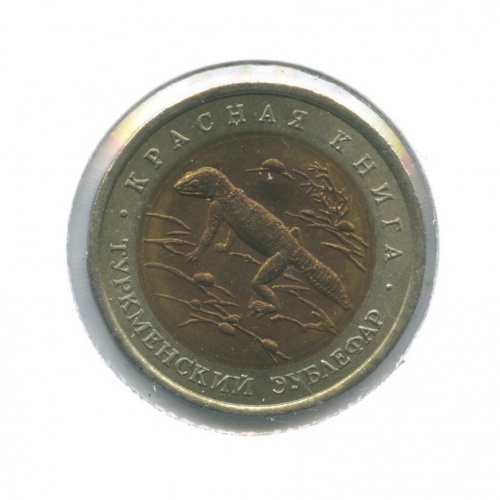 50 рублей — Красная книга - Туркменский эублефар (в холдере) 1993 года (Россия)