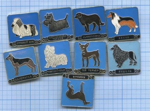 Набор значков «Собаки» (СССР)