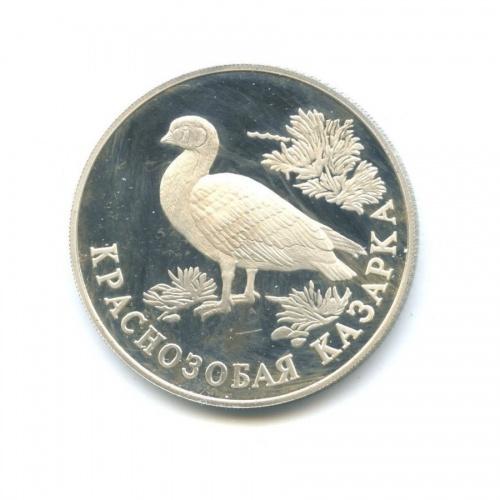 1 рубль — Красная книга - Краснозобая казарка 1994 года (Россия)