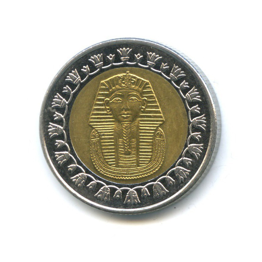 1 фунт 2008 года (Египет)