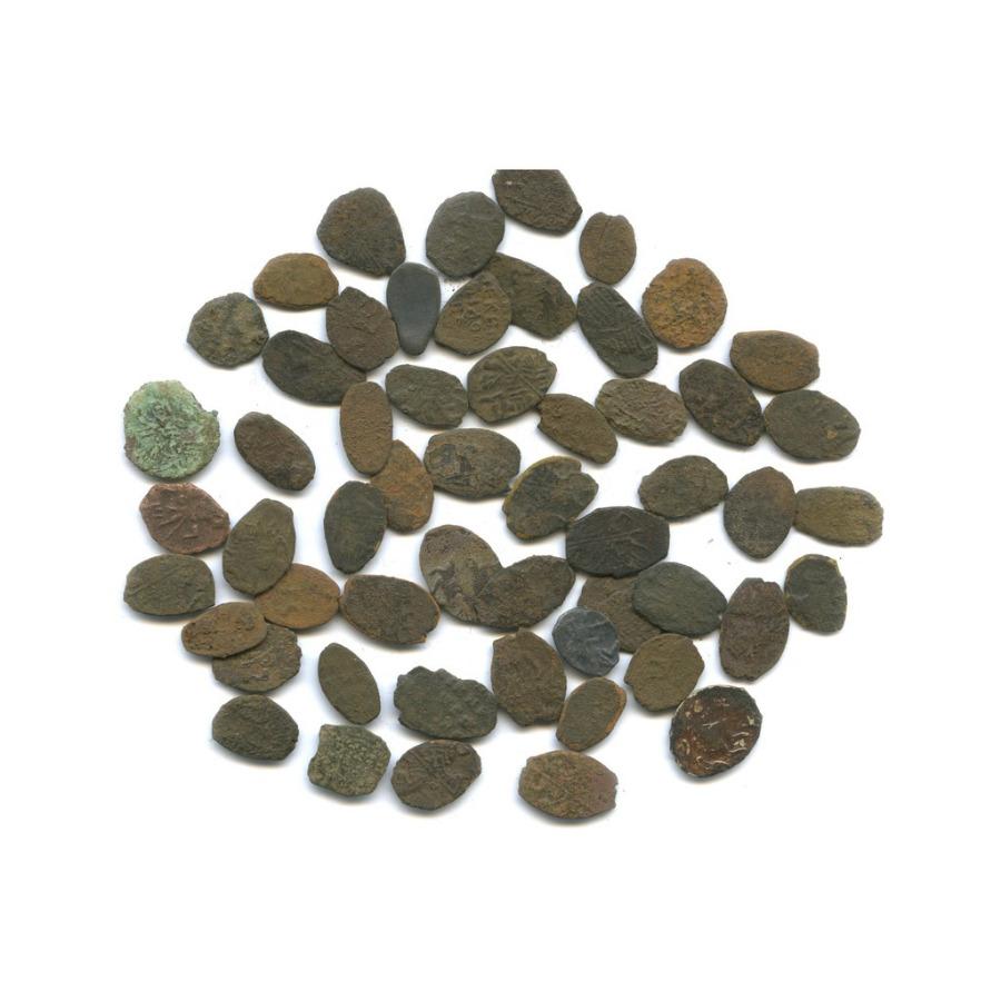 Набор монет «чешуя» (55 шт.)