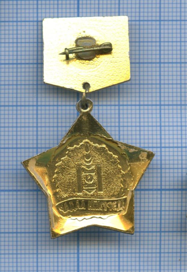 Знак «МХЗЭ - Цэргийн Алдар» (Монголия)