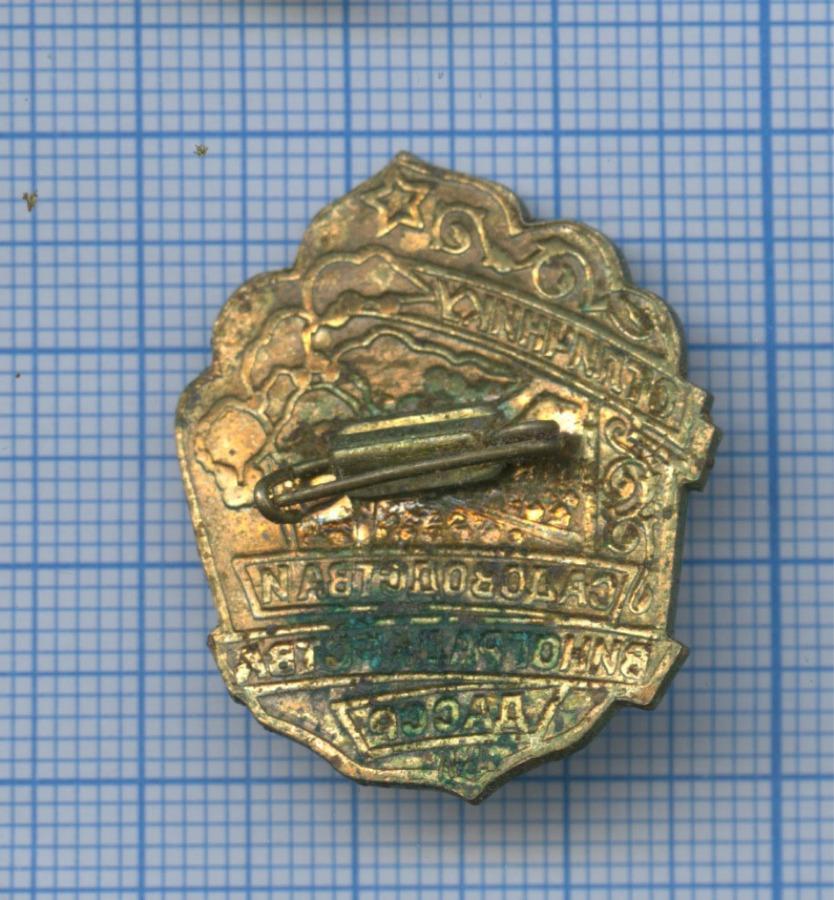 Знак «Отличнику садоводства ивиноградарства ДАССР» (СССР)
