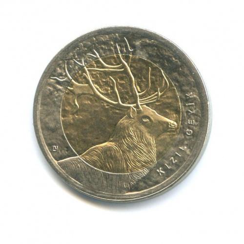 1 лира — Фауна Турции - Олень 2012 года (Турция)