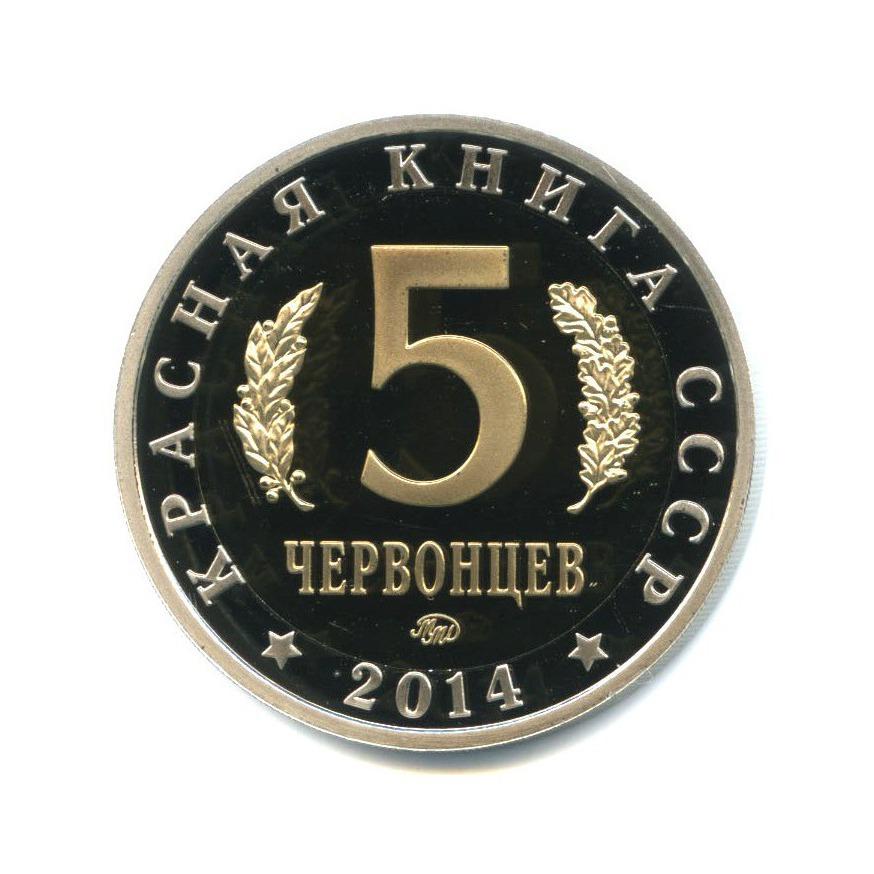 Жетон «5 червонцев 2014 - Красная книга СССР - Сахалинская кабарга»