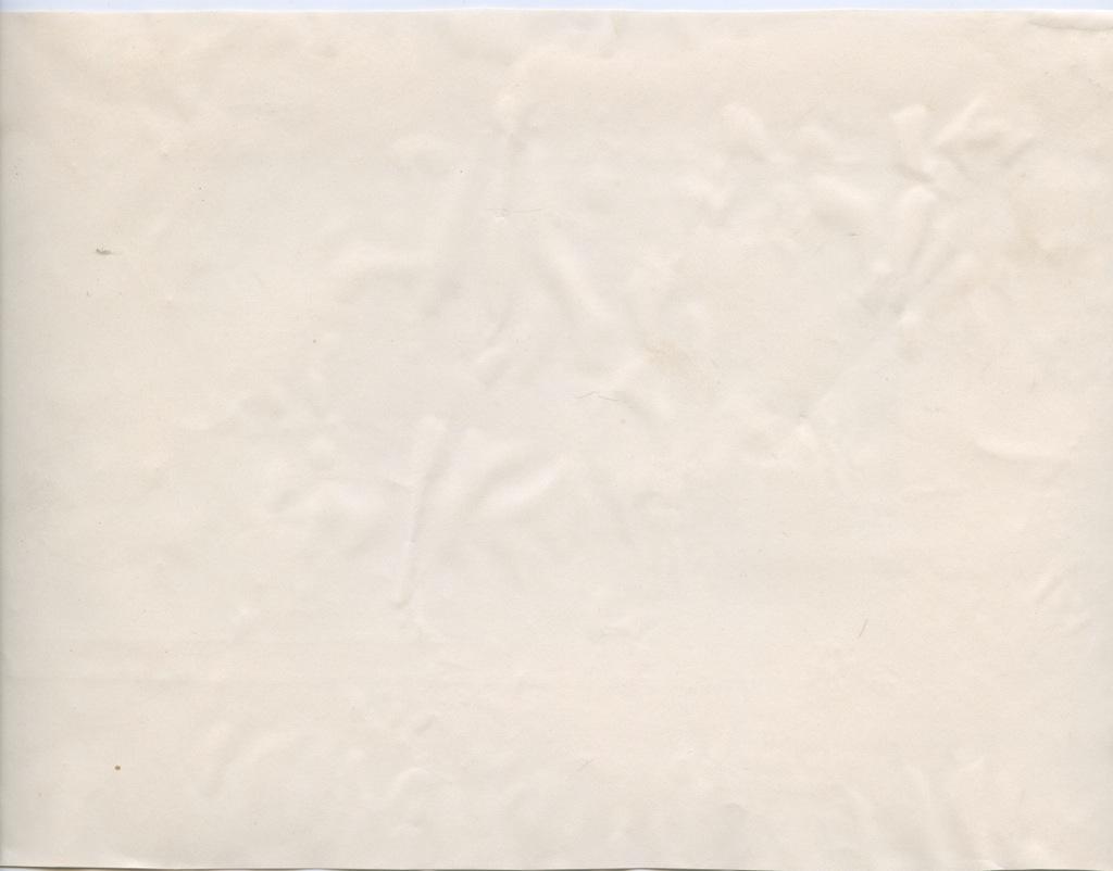 Вырезка «Группа офицеров Нарвского полка сВеликим Князем Сергеем Александровичем ввновь пожалованным знаммене (ккор. «Смоленск»)» (Российская Империя)