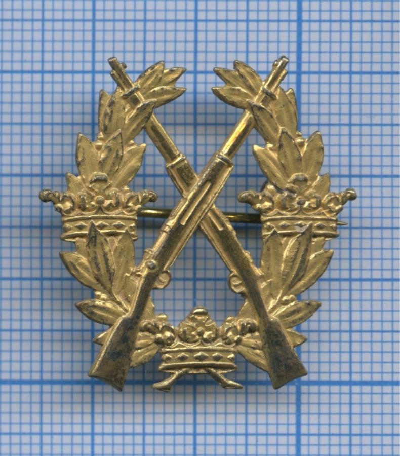 Знак «Заотличную стрельбу извинтовки», 1-я степень (Швеция)