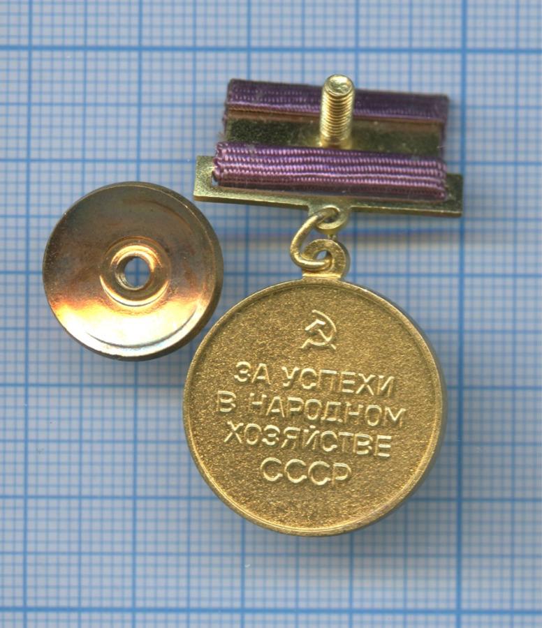 Медаль «Выставка достижений народоного хозяйства» ММД (СССР)