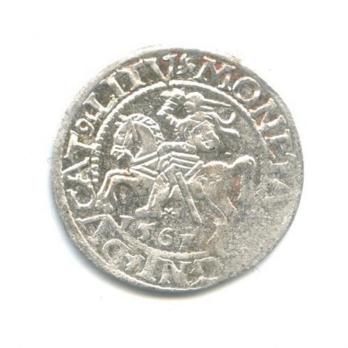 Полугрош - Сигизмунд IIАвгуст, Великое Княжество Литовское 1561 года