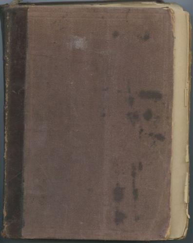 Книга «Меченосцы», Санкт-Петербург (280 стр.) 1902 года (Российская Империя)