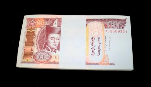 Набор банкнот 20 тугриков 2013 года (Монголия)