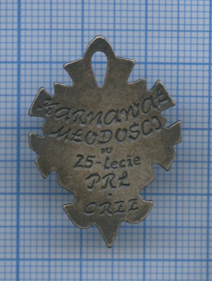 Знак «Karnawal mlodosci» (Польша)