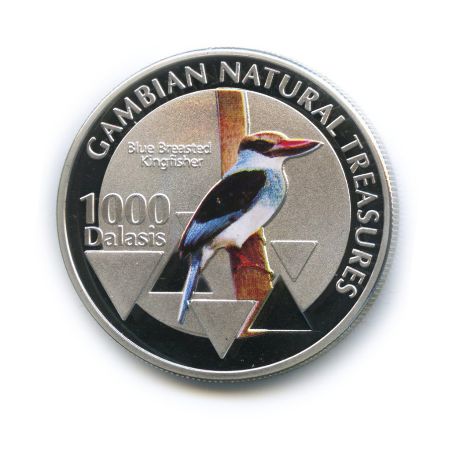 1000 даласи - Природные богатства Гамбии - Синегрудая альциона, Гамбия (цветная эмаль) 2015 года