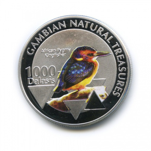 1000 даласи - Природные богатства Гамбии - Африканский крошечный зимородок, Гамбия (цветная эмаль) 2015 года