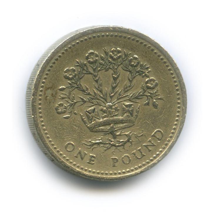 1 фунт - Северная Ирландия, цветущий лен 1991 года (Великобритания)