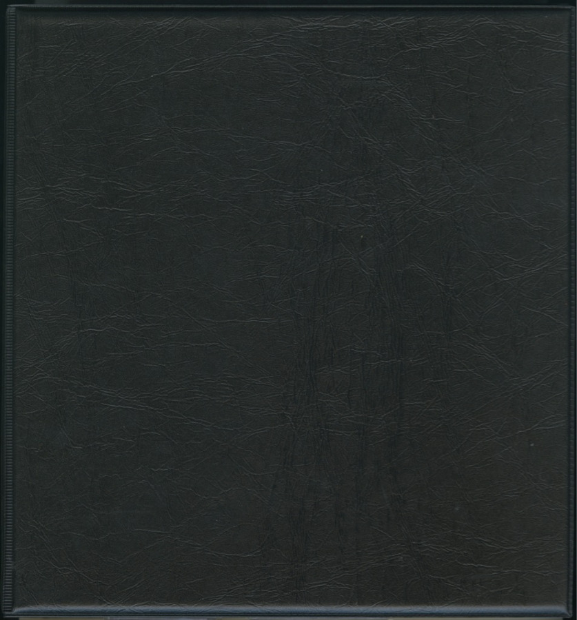 Альбом для монет (319 ячеек)