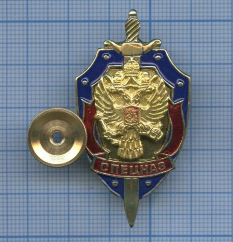 Знак «Спецназ» (Россия)