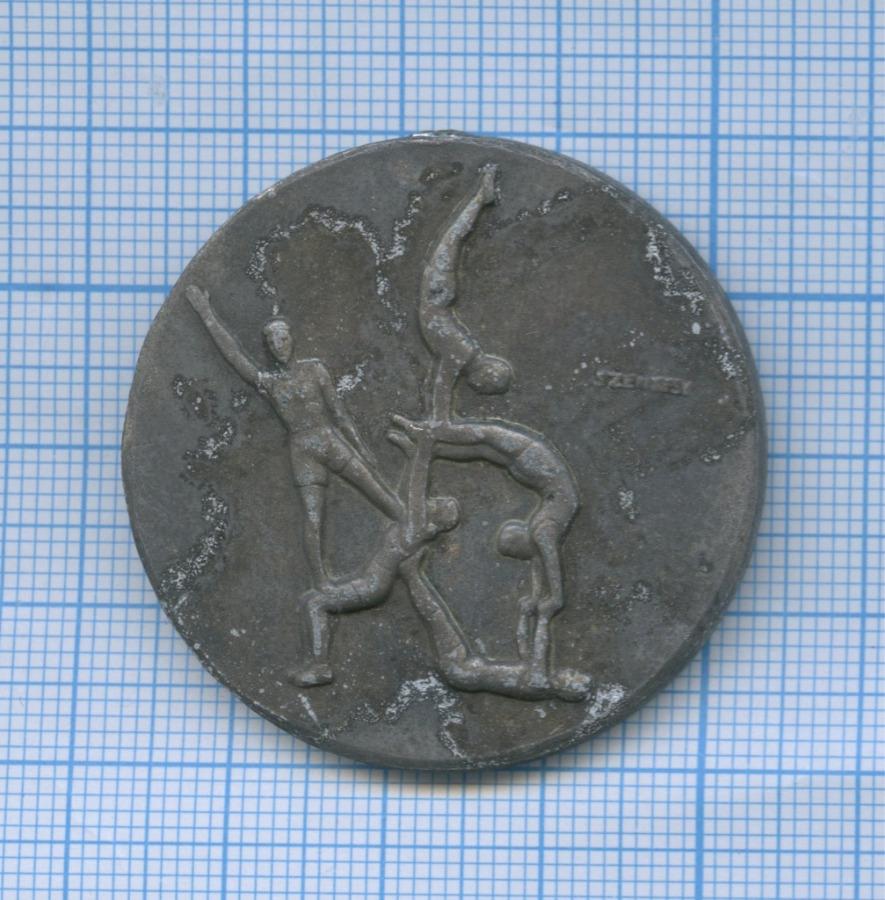 Медаль «Alkotmany Beke - Kupa» 1959 года (Венгрия)