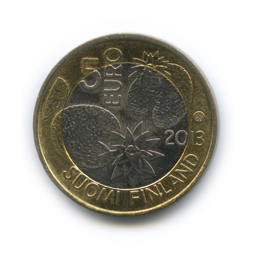 5 евро — Северная природа - Лето 2013 года (Финляндия)