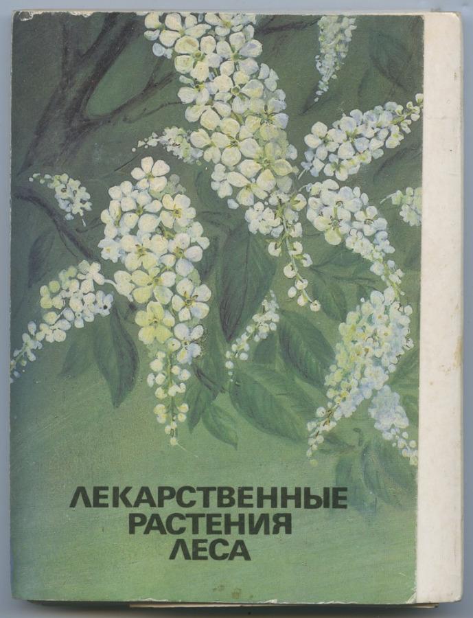 Набор открыток «Лекарственные растения леса» (32 шт.) (СССР)