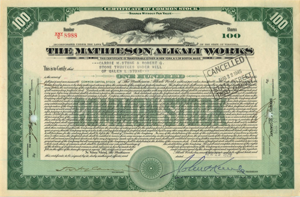 100 акций («The Mathieson Alkali Works») 1929 года (США)