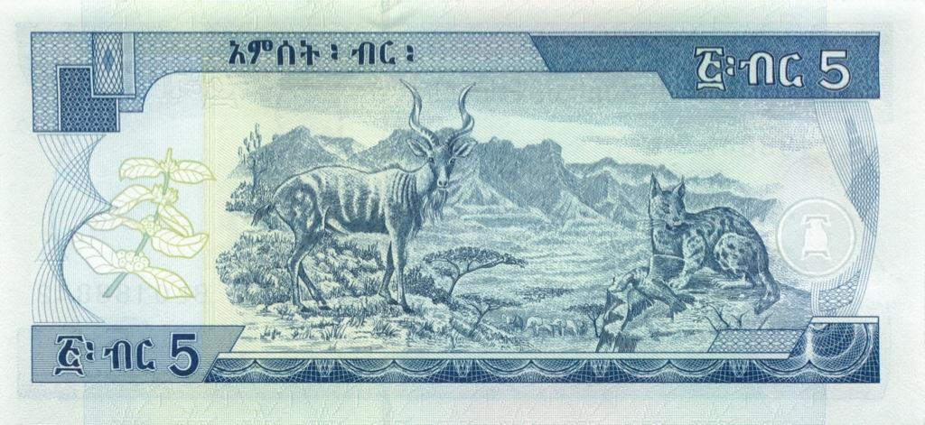 5 быр (Эфиопия) 2003 года