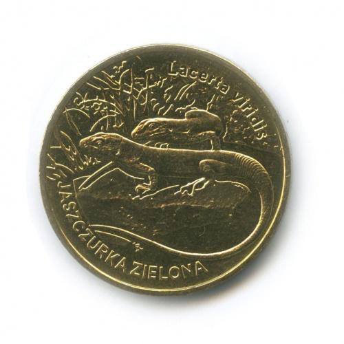 2 злотых — Всемирная природа - Зелёная ящерица 2009 года (Польша)