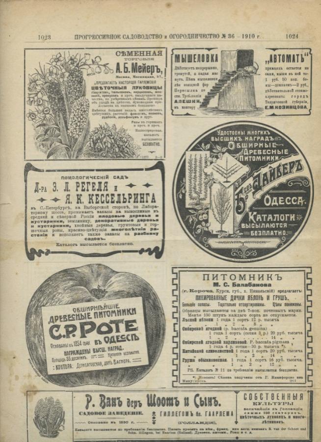 Журнал «Прогрессивное садоводство иогородничество», выпуск №36 (16 стр.) 1910 года (Российская Империя)