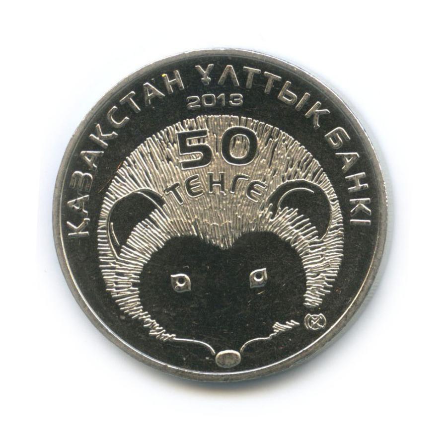 50 тенге — Красная книга - Длинноиглый ёж 2013 года (Казахстан)