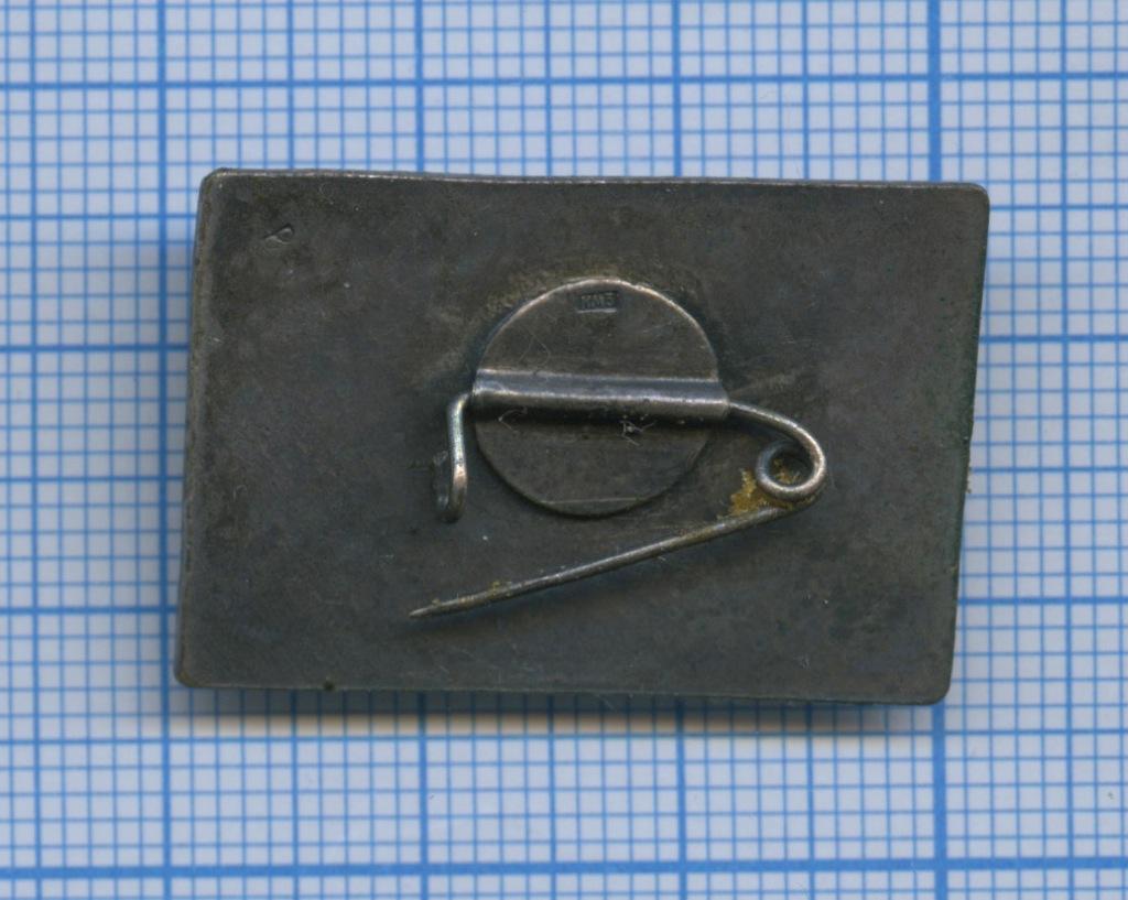 Значок «Кострома» (СССР)