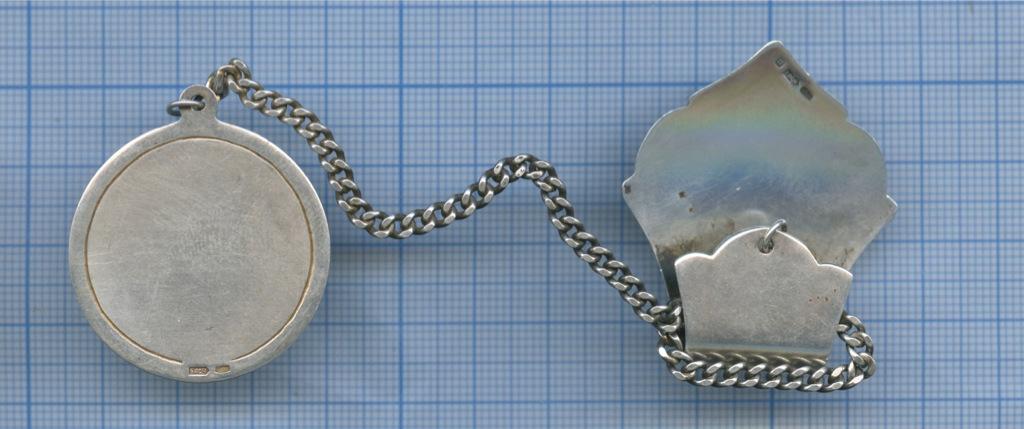 Ионизатор для воды (925 проба серебра)