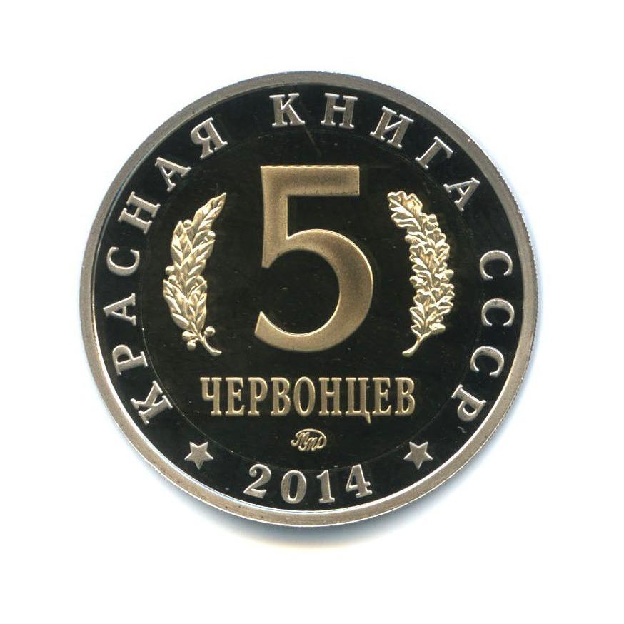 Жетон «5 червонцев 2014 - Красная книга - Сахалинская Кабарга» ММД (Россия)