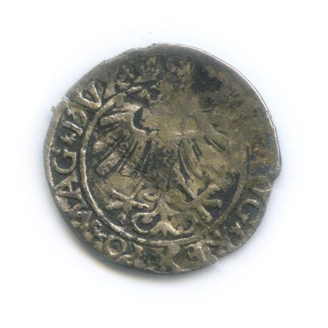 Полугрош (Великое Княжество Литовское) 1558 года