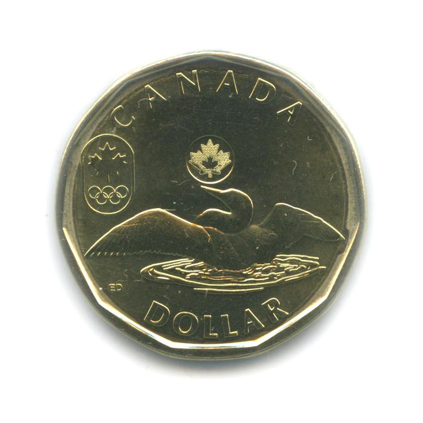 1 доллар — XXII зимние Олимпийские Игры, Сочи 2014 - Лаки луни (взапайке) 2014 года (Канада)