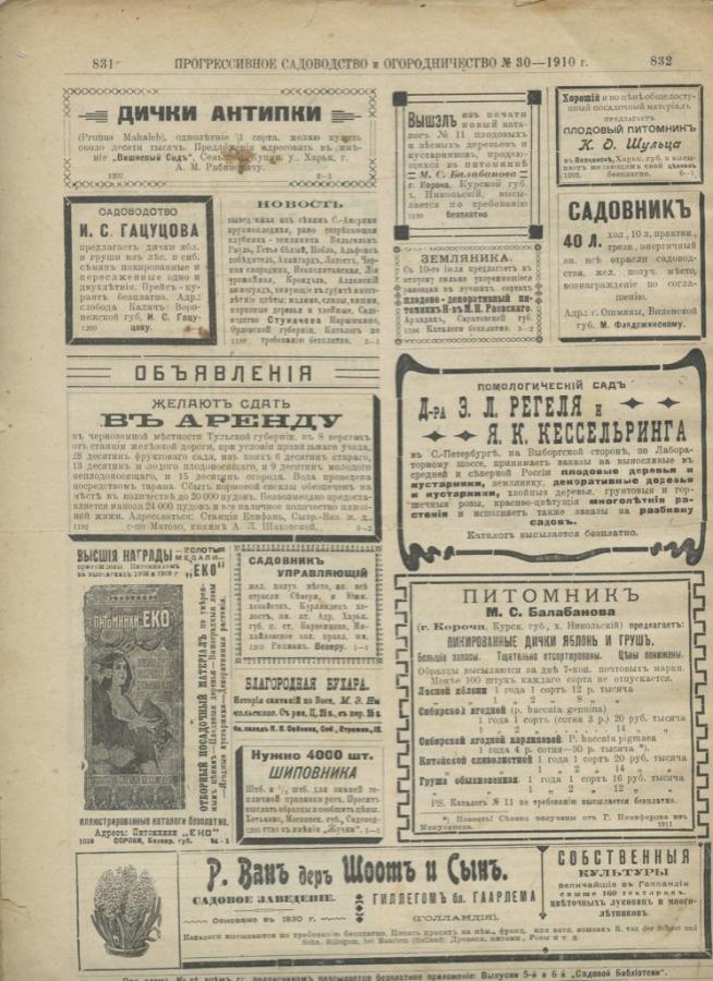 Журнал «Прогрессивное садоводство иогородничество», выпуск №30 (8 стр.) 1910 года (Российская Империя)